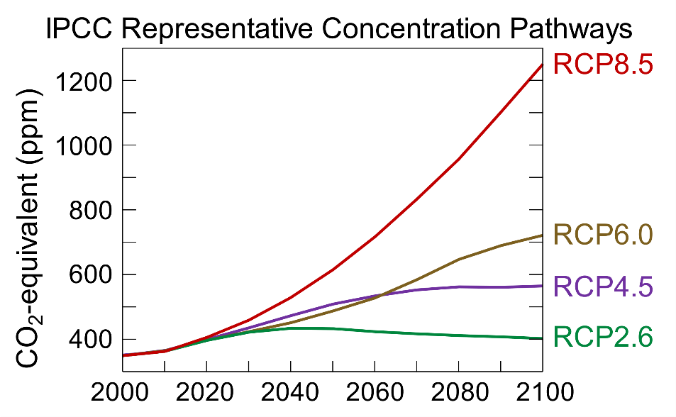 Figure 3: All forcing agents' atmospheric CO2-equivalent concentrations (in parts-per-million-by-volume (ppmv)) according to the four RCPs used by the fifth IPCC Assessment Report (Efbrazil, 2020)
